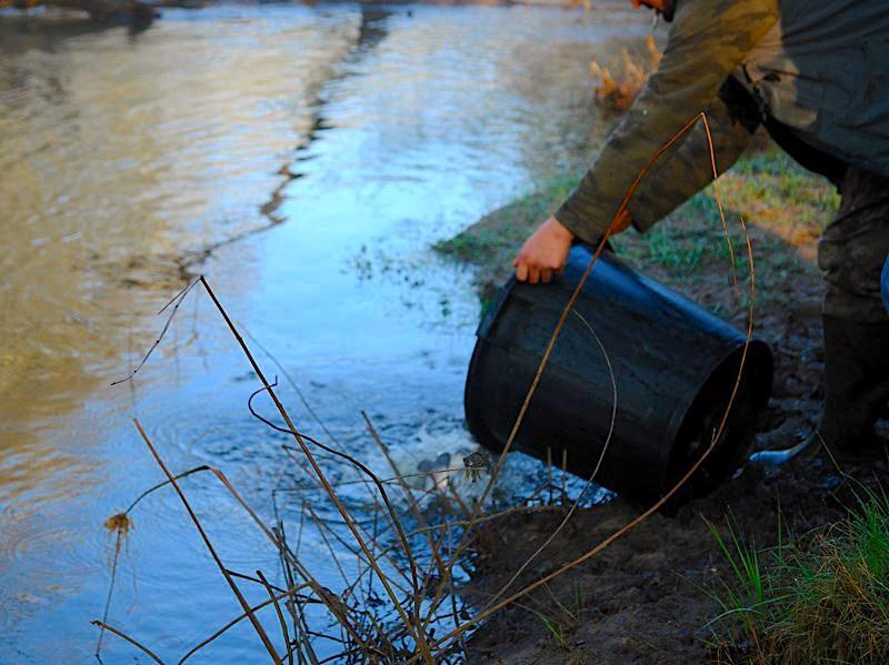 Ouverture de la pêche à la Truite – Samedi 13 Mars 2021